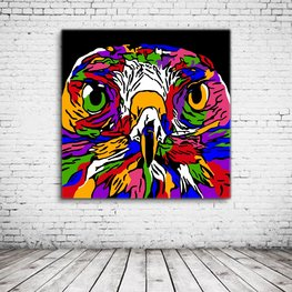 Hawk Pop Art