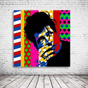 Pop Art Herman Brood